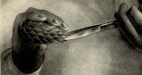 Изготовление еловой шишки